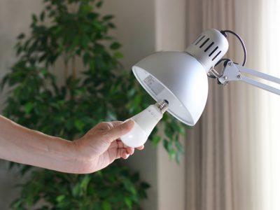 照明の掃除