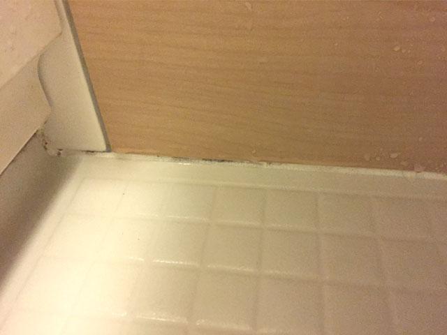 お風呂の黒カビ部分