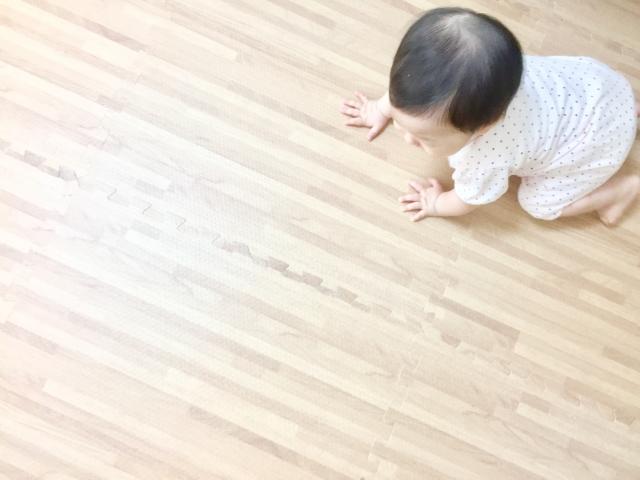 フローリングをチェックする子供