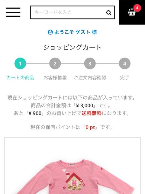 キャリーオンの購入画面
